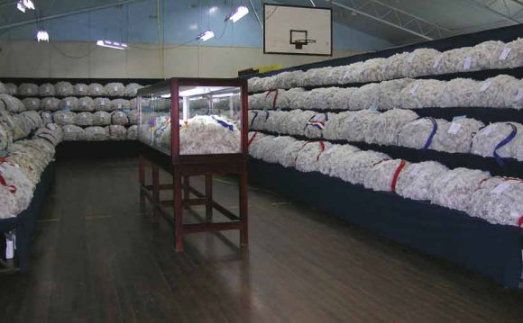 Textile industry in Maharashtra